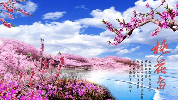08:00-09:30:前往桃花岛的一路百花争艳,暗香浮动,争妍竞秀.